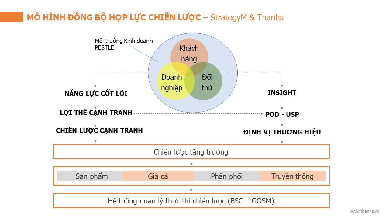 Mô hình đồng bộ hợp lực chiến lược - StrategyM & Thanhs