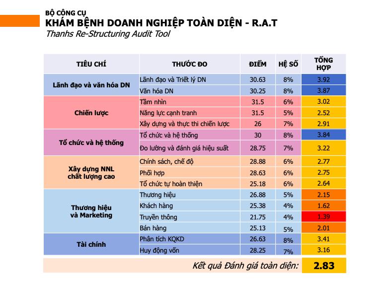 Bộ chỉ số đánh giá DN toàn diện - Re-Structuring Audit Tool RAT